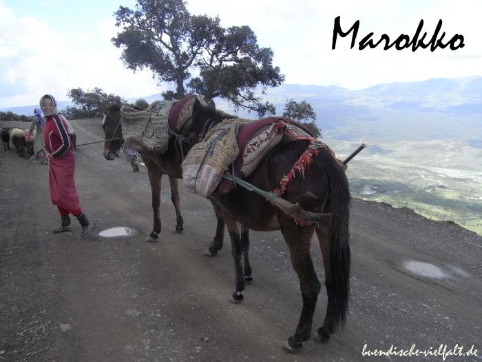 afrika-marokko